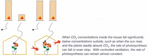 Carbon dioxide conentrations