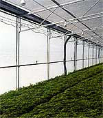 Greenhouse Sidewall