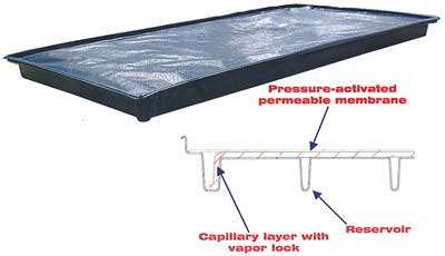 Waterbed design