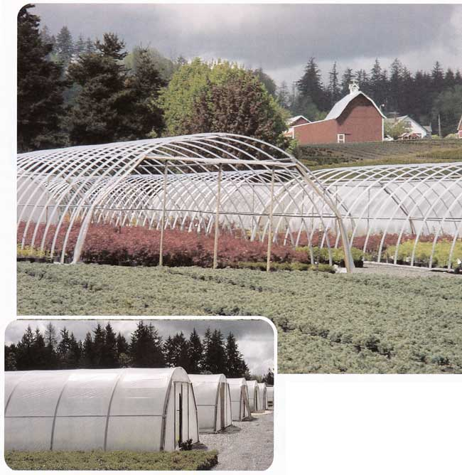 Pace Setter 1000 greenhouse