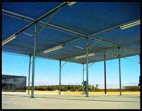 Rigid Frame fixed roof shade house