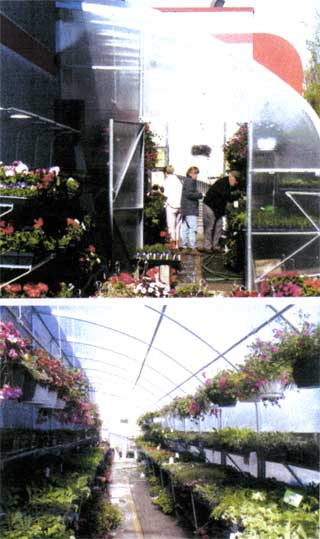 Smart-Mart greenhouse interior views