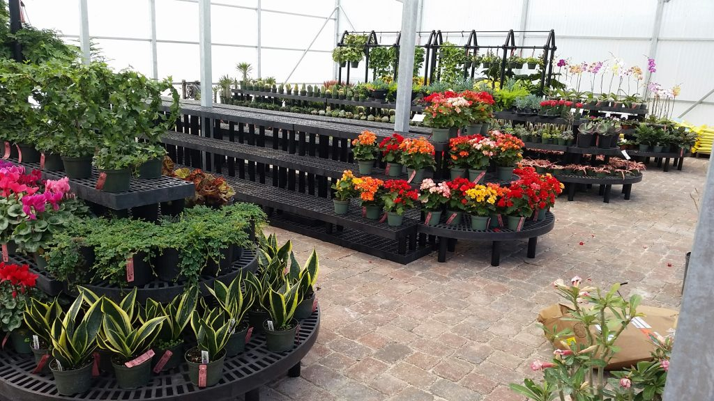 Tiered Wall Display Benches